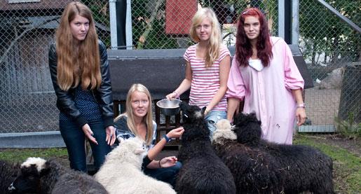 Matilda Hedman, Isabelle Karlsson, Anna Forsgren och Julia Jonsson ser fram emot att börja jobba med djur, trots den låga lönen.