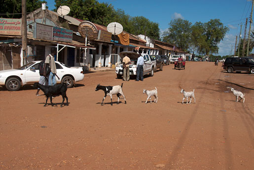 I centrum av huvudstaden Juba går getterna på grusgator. Några få vägar i Sydsudan är asfalterade.
