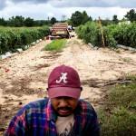 Pascal, 38, betalade nästan 4000 USD för att korsa gränsen från Mexiko till USA för åtta år sedan.