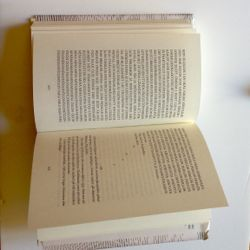 Ett av de allra vildaste uppslagen i Andrzej Tichýs experimentella prosabok om det litterära engagemanget.