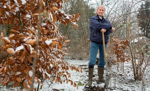 Rolf Östinge tror att det blir svårt att rekrytera trädgårdsarbetare.   Foto: Drago Prvulovic