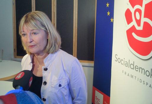 Marita Ulvskog presenterar Socialdemokraternas EU-plattform.