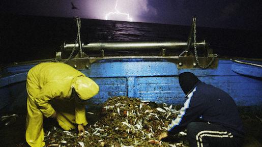 Filmen Lampedusa in winter, handlar om vad som händer med vardagen i ett samhälle då många flyktingar kommer dit.