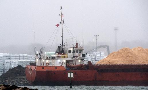 Whiskey Trio i regn och dis i hamnen i Varberg. Det Panamaflaggade fartyg som ertappats med undermålig säkerhetskultur kan komma att bli kvar länge i hamnen i Varberg. Foto: Johan Nilsson / TT