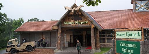 H÷÷R 20150709 FÂret Shaun, det popul‰ra tv-fÂret i lera, fÂr en egen temapark pSkÂnes Djurpark 2016. Foto: Erland Vinberg / TT / kod 10510