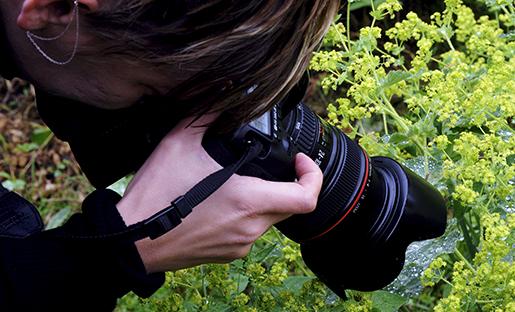 GRƒSK÷ 2015-06-26 Kvinnlig fotograf tar bild pv‰xten daggkÂpa. Foto Hasse Holmberg / TT Kod 96