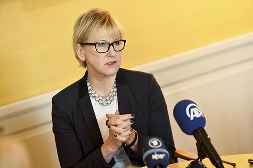Fn svensk misstankt for mutbrott