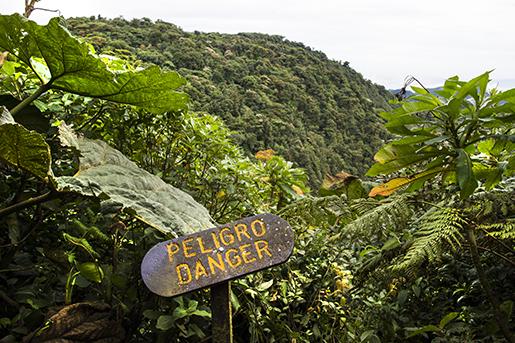 MONTEVERDE 2015-09-01 Molnregnskog i Monteverde i Costa Rica  Foto: Lars Pehrson / SvD / TT / Kod: 30152 ** OUT DN och Dagens Industri (‰ven arkiv) och Metro**